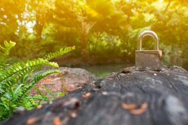 LISTEN: Cisco Cybersecurity Experts Discuss Pressing Trends for NCSAM
